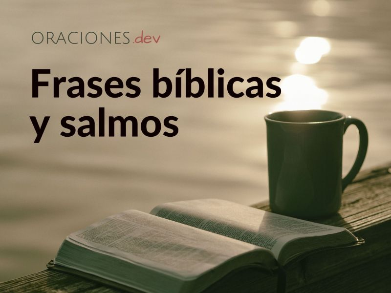 FRASES BÍBLICAS Y SALMOS CATÓLICOS